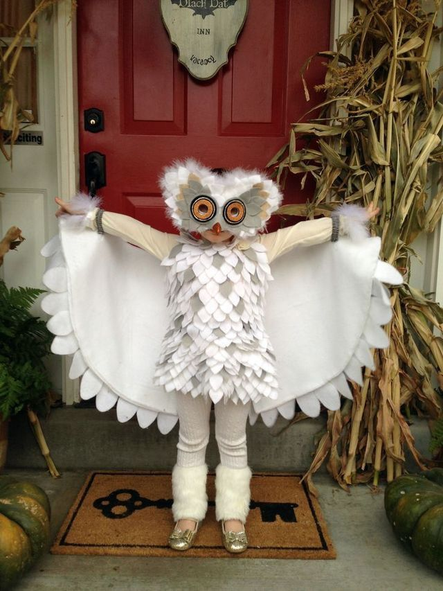 Owl Costumes ideas for halloween